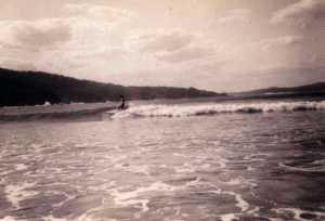 Geoff surfing seal Rocks 1965