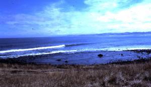 NZ Manu Bay 1977