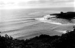 Angourie 1977
