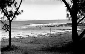 Arrawarra 1977