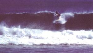 Bali 1977 Crow surfing at Legian