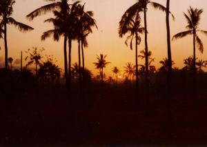 Bali Legion Sunrise 1977