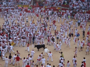 Bull Fight Barcelona 2011