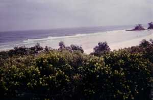 Byron Bay surf 1980