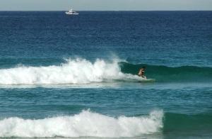 Redhead surfer 22-4-11