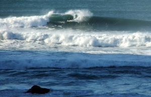 Redhead surfer13 4-6-11