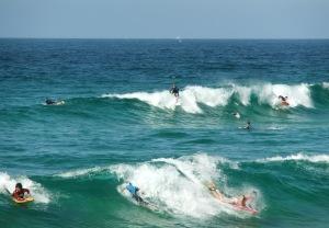 Redhead surf 17-09-11