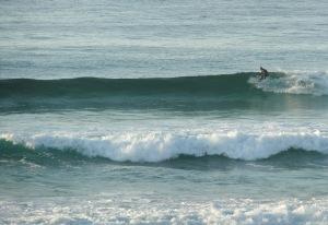 Redhead surfer17-09-11