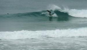Redhead surfer 27-09-11