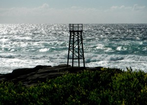 Redhead Shark Tower2 9-12-11