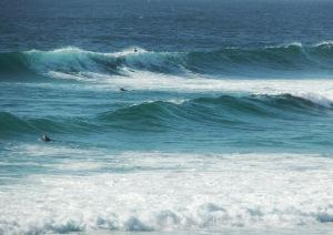 Redhead Surf 26-12-11