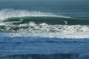 Redhead Heavy wave 4-6-11