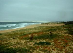 Redhead Beach 05-03-12