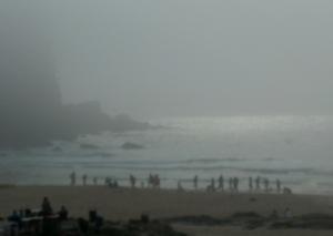 Redhead Beach sea mist 20-11-11