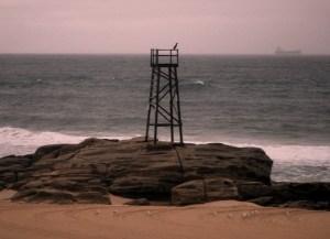 Redhead Shark tower 05-03-12