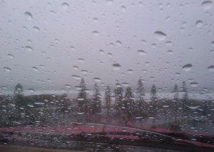 Redhead storm 2-10-11