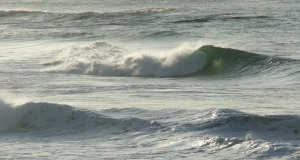 Redhead surf 2 1-10-11
