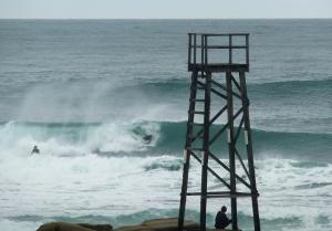 Redhead surfer 1 26-11-11