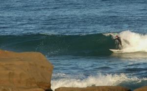 Redhead- surfer1 25-08-11