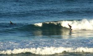 Redhead surfer 25-08-11