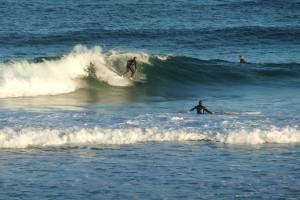 Redhead surfer3 25-08-11