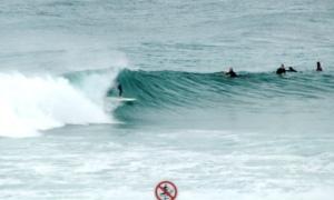 Redhead surfer 26-11-11