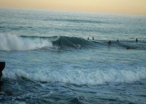 Redhead surfer 29-07-11