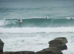 Redhead surfer 3 26-11-11