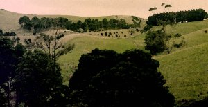 Sale Victoria countryside in watercolour