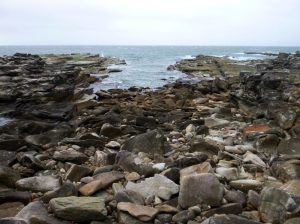 Redhead Bluff Rockshelf 20-10-14