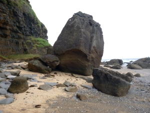 Turtle Head Rock 20-10-14