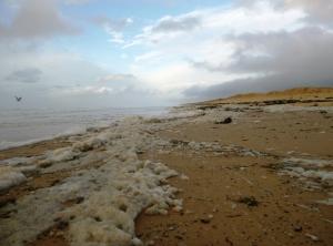 Redhead Beach after storm 22-04-15