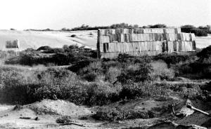 Redhead Sand Shed 1978