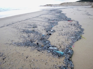 Plastics washed up Redhead Beach 17-05-14