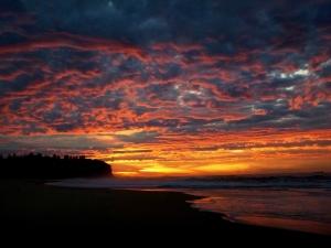 Redhead Beach fiery sunrise 11-07-16